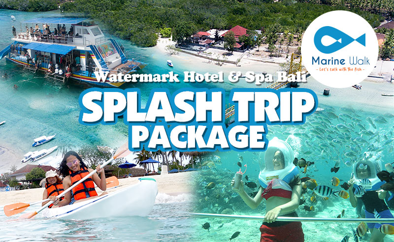SPLASH TRIP PACKAGE