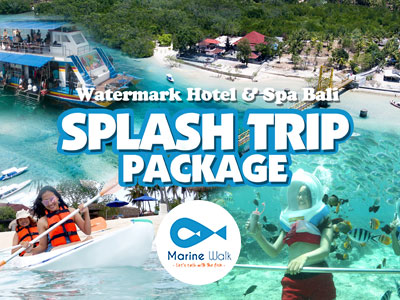 watermark hotel spa bali splash trip package